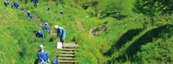 草刈りの写真